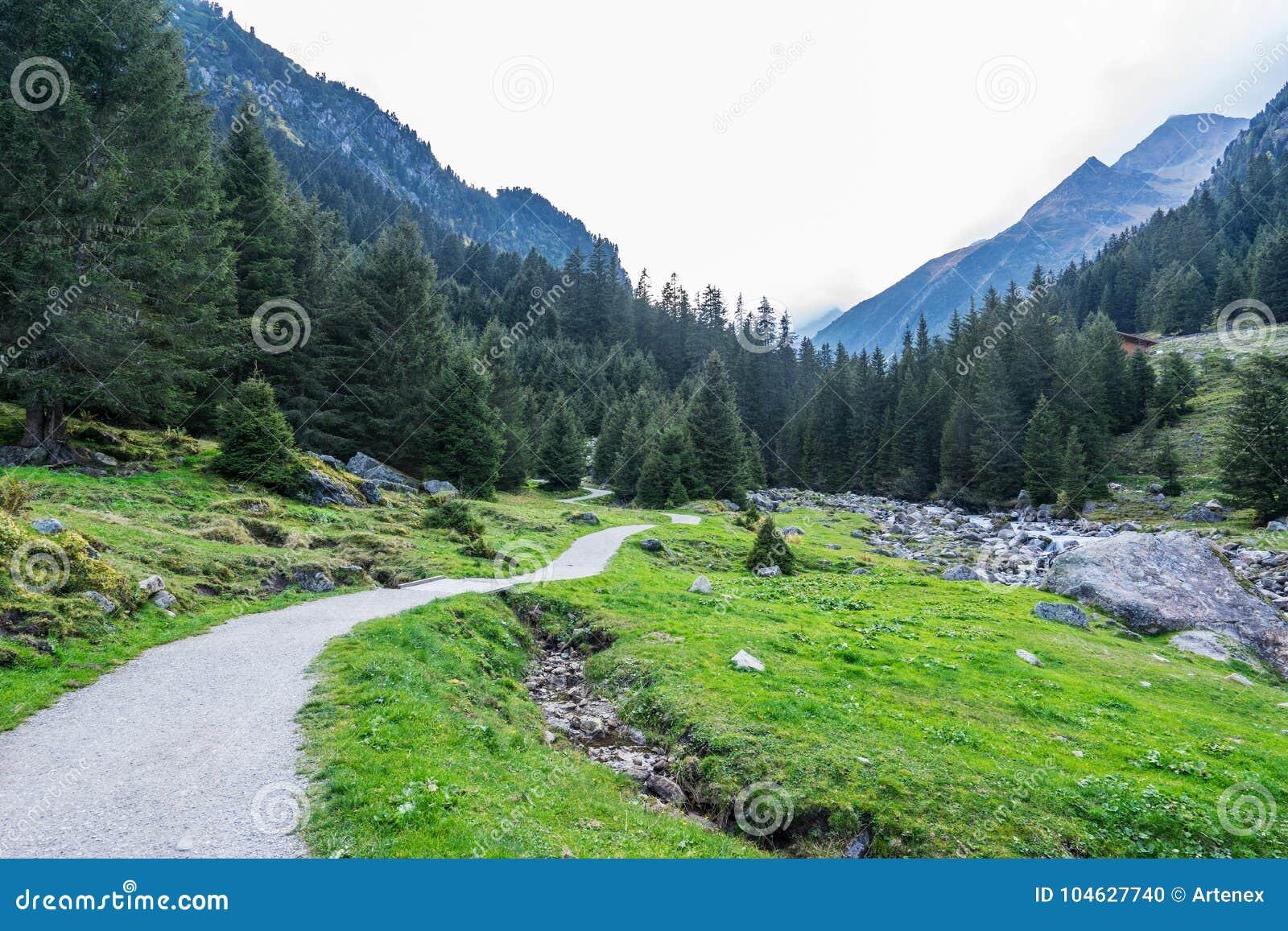 Download Bergen, Vallei En Piekenlandschap, Natuurlijk Milieu Wandeling In De Alpen Stock Foto - Afbeelding bestaande uit stroom, berg: 104627740