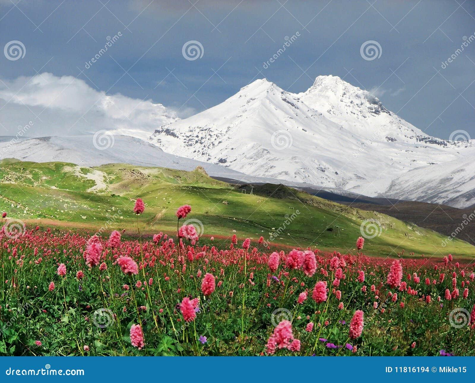 Bergen van de Kaukasus.