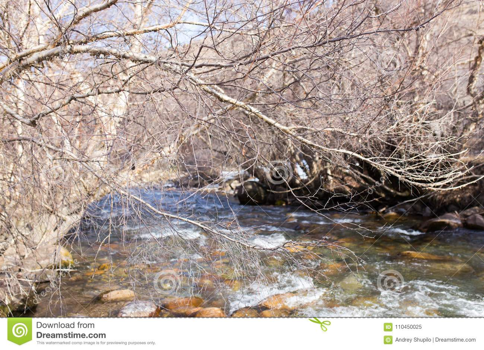 Bergflod i Kasakhstan i natur