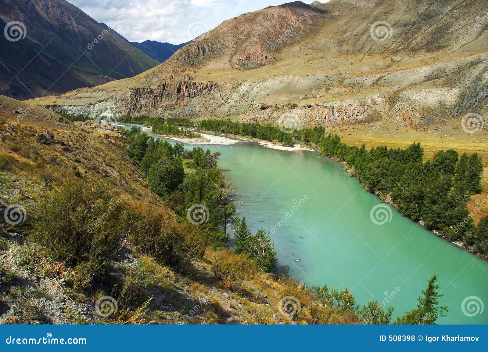 Bergflodturkos