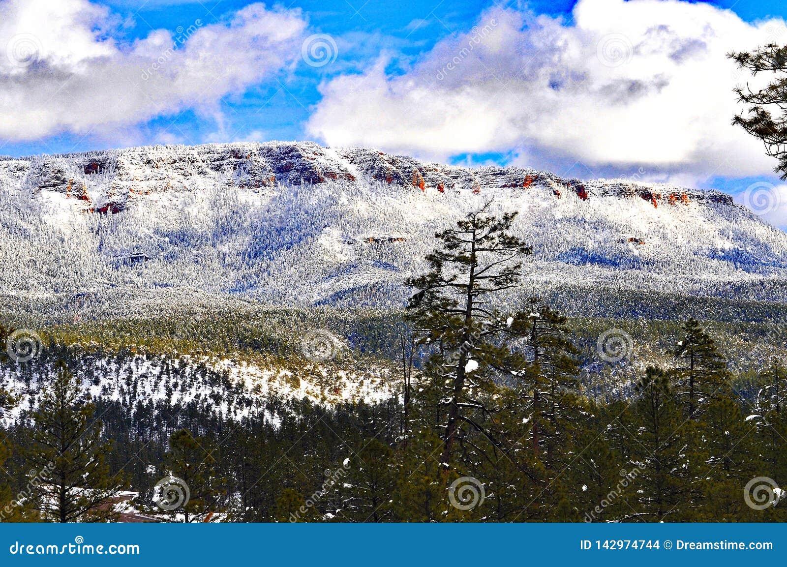 Bergkantpacken med snö sörjer träd och cloulds