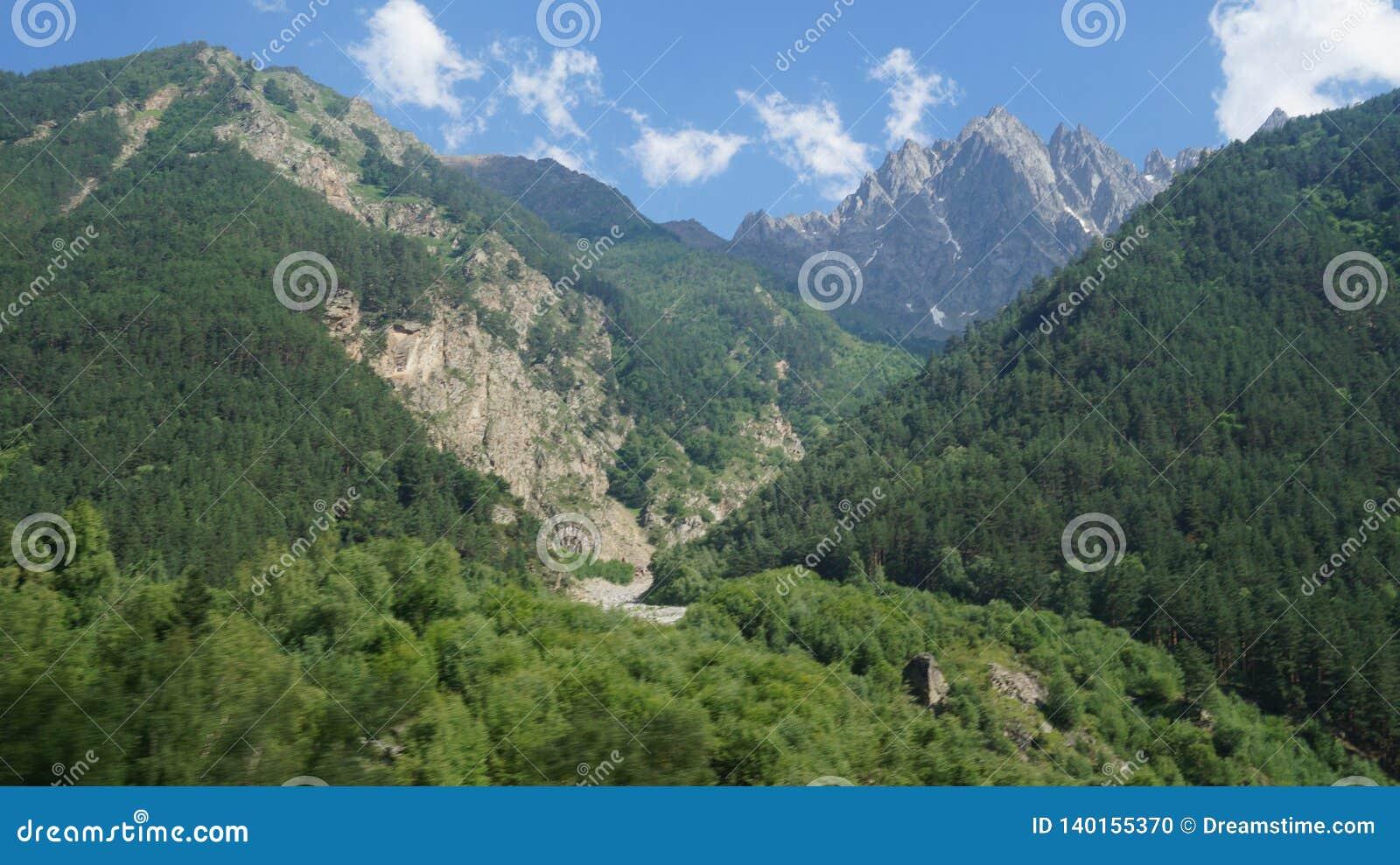 Bergpieken met groene bomen worden behandeld die