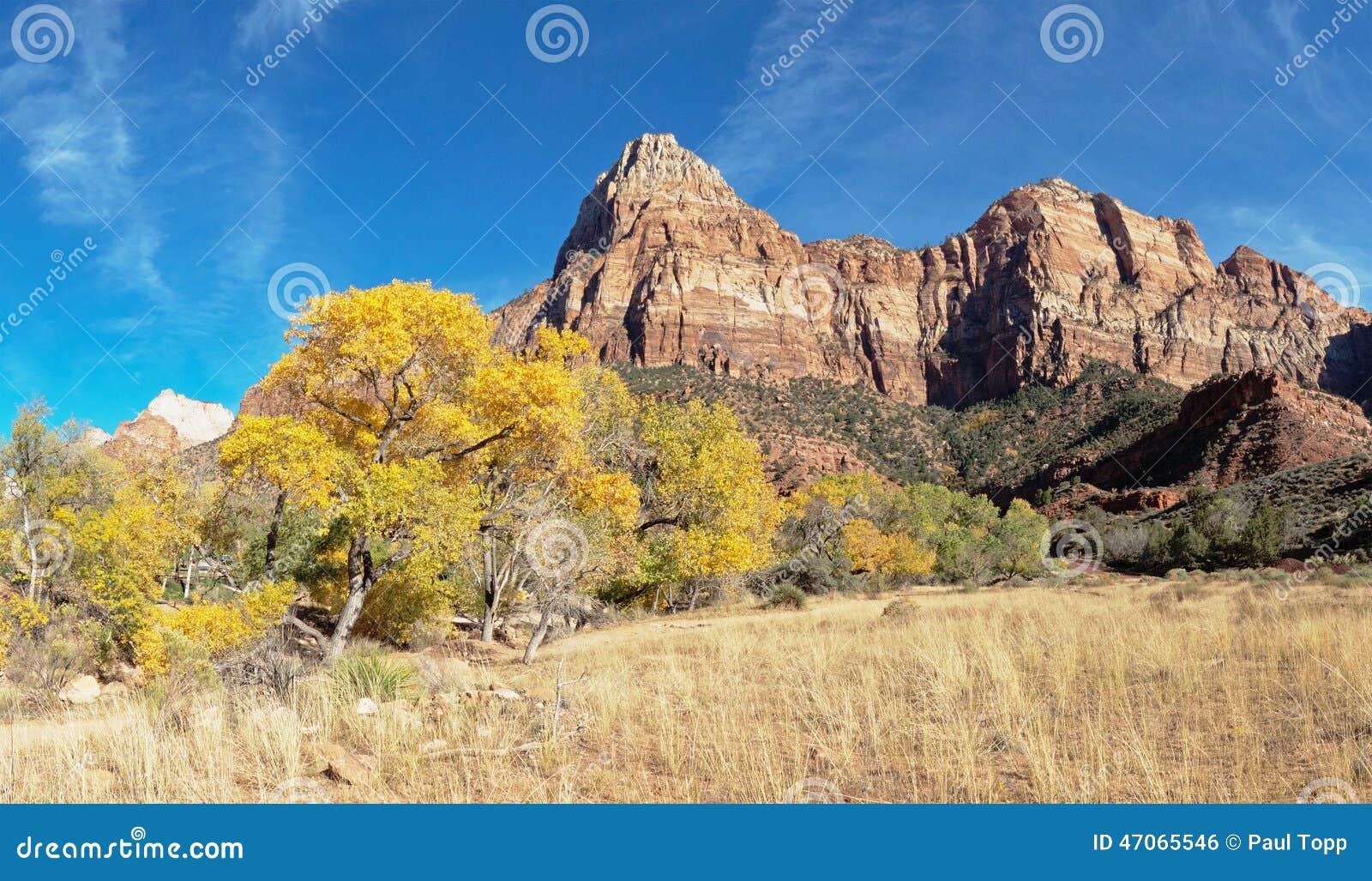 Bergpieken in Zion National Park Utah