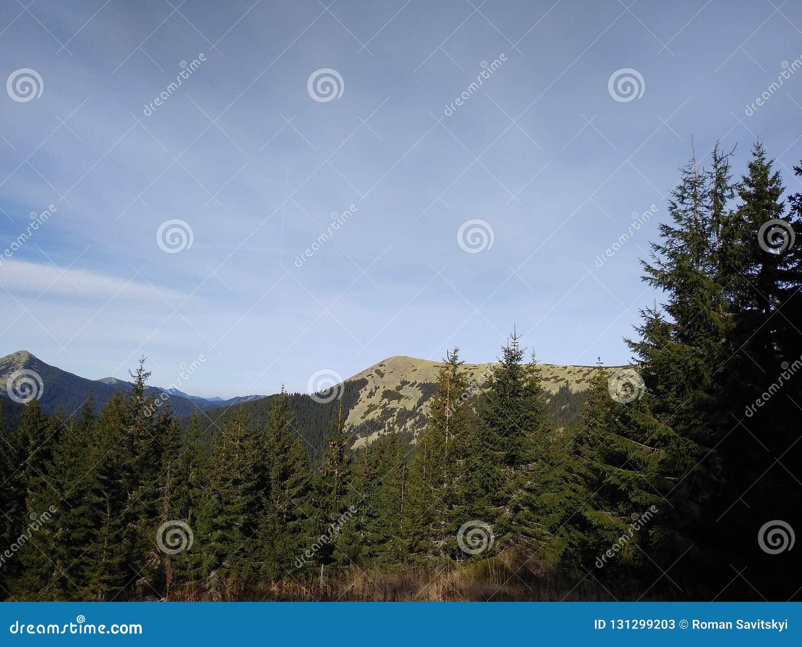Bergrutt som monterar Sinyak från Bukovel Gorgany, ukrainska Carpathians