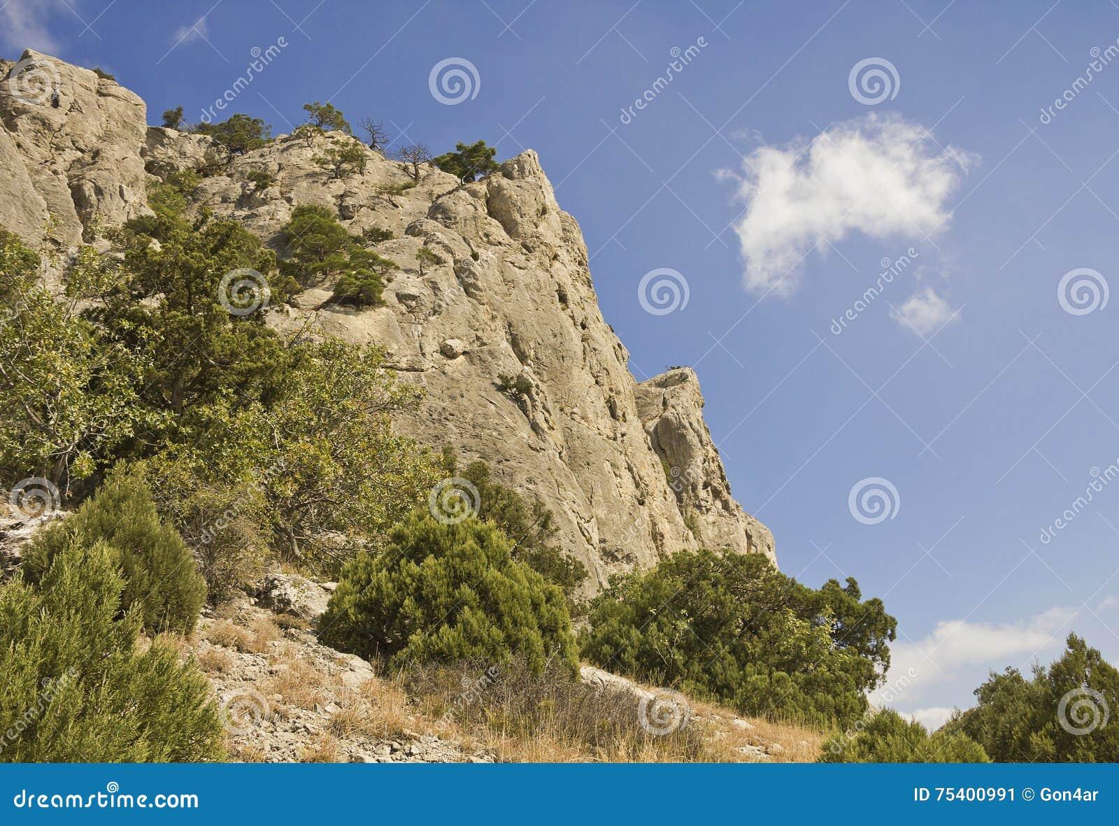 Bergspitzen, überwältigt mit Kiefern und Wacholderbusch