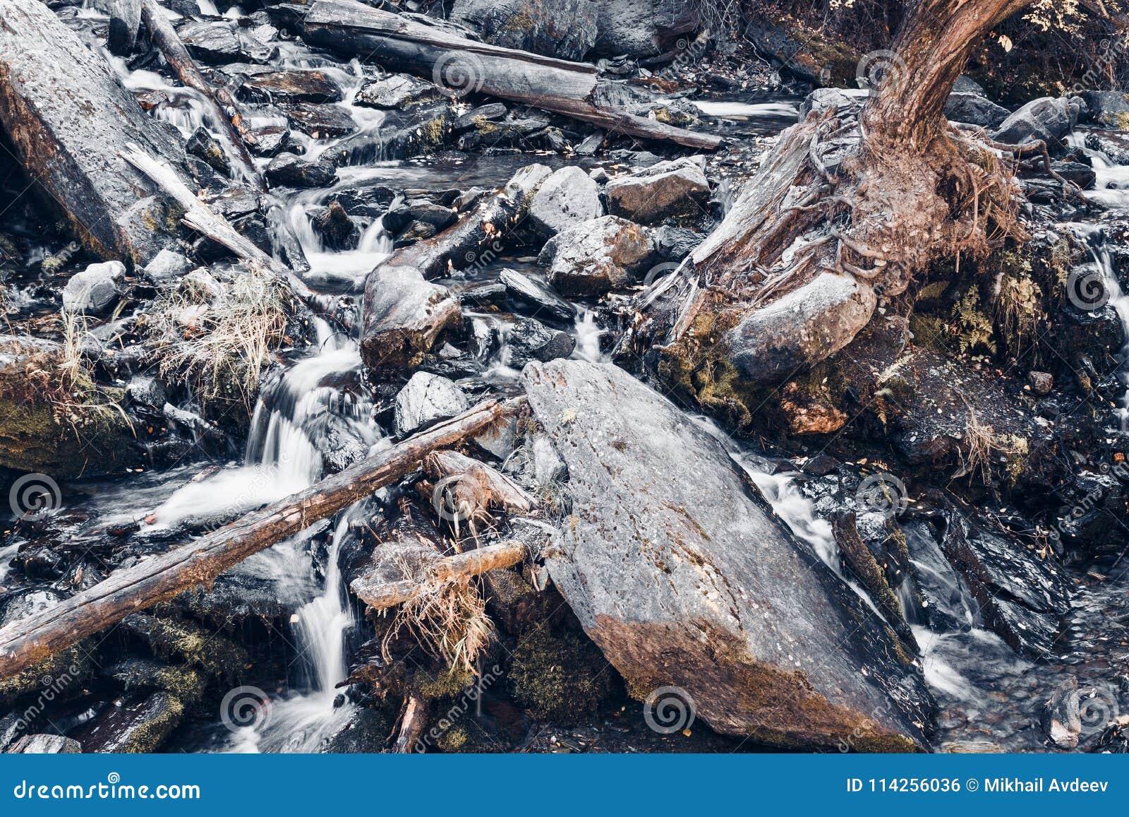 Bergström i skogen
