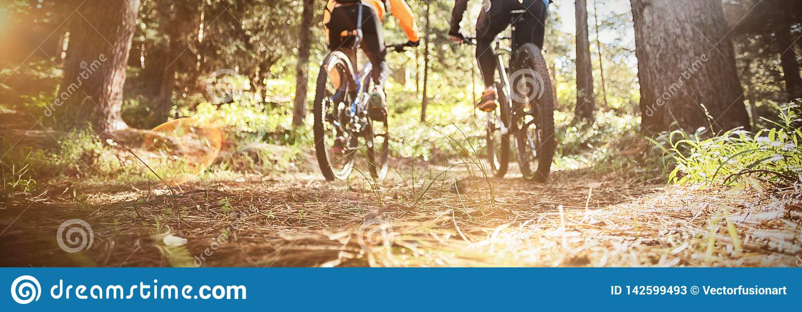 Berijdende de bergfiets van het fietserpaar in het bos
