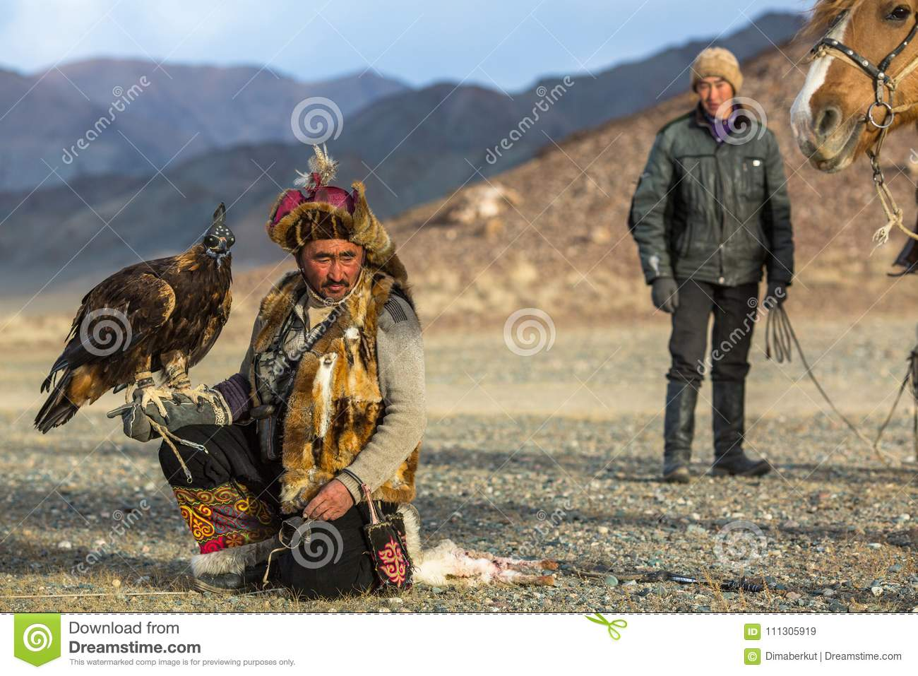 Berkutchi Eagle Hunter while hunting to the hare with a golden eagles on his arms in the mountains of Bayan-Olgii aimag.