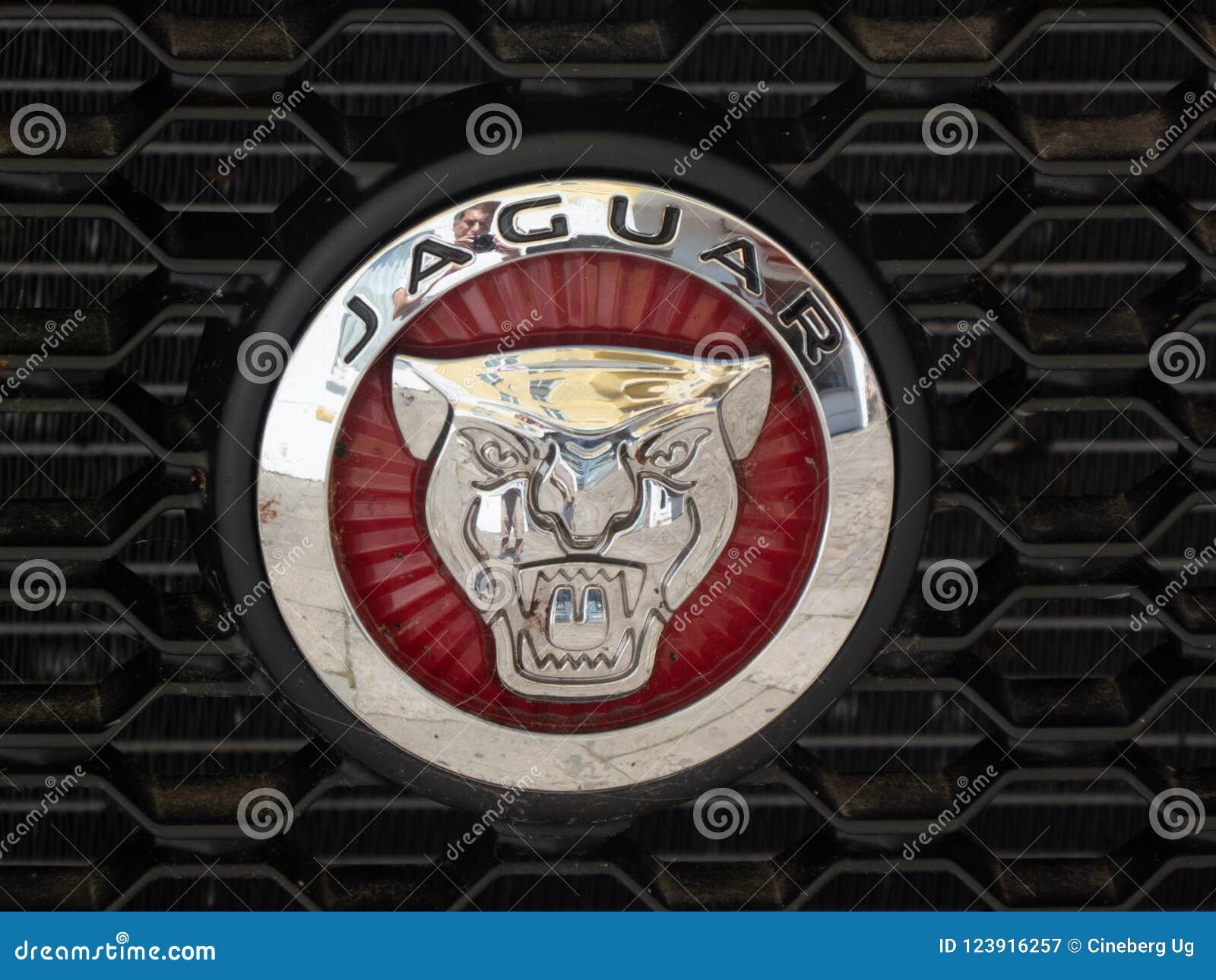 Jaguar Car Symbol Editorial Photography Image Of Expensive 123916257