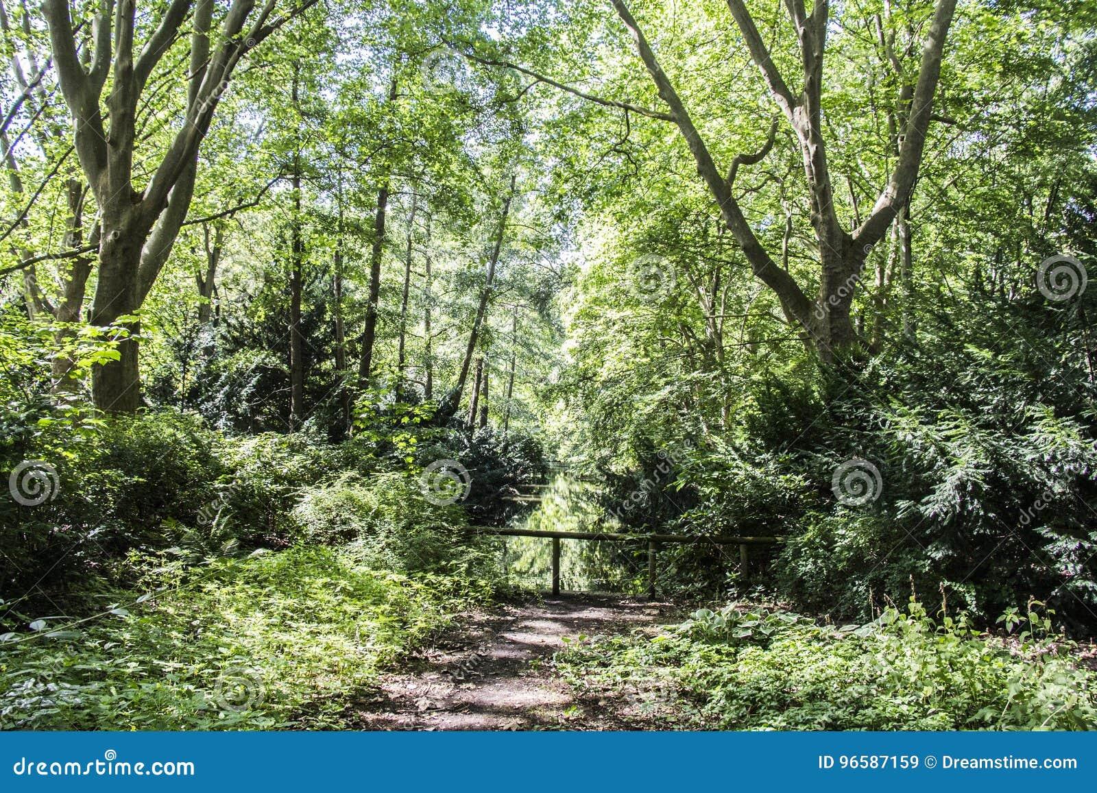 Berlin nature stock image. Image of ...