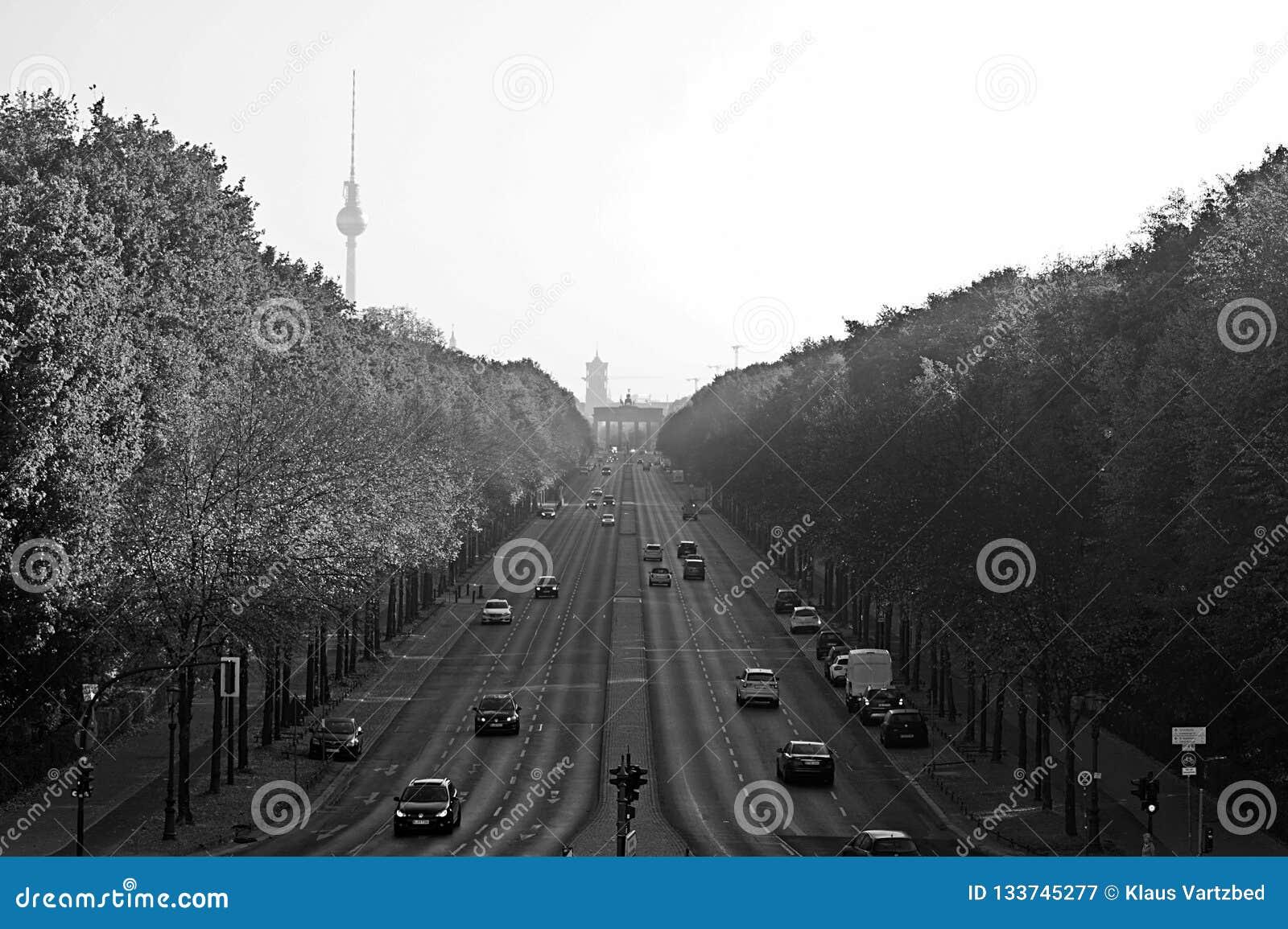 Berlin Panorama met Tiergarten-park