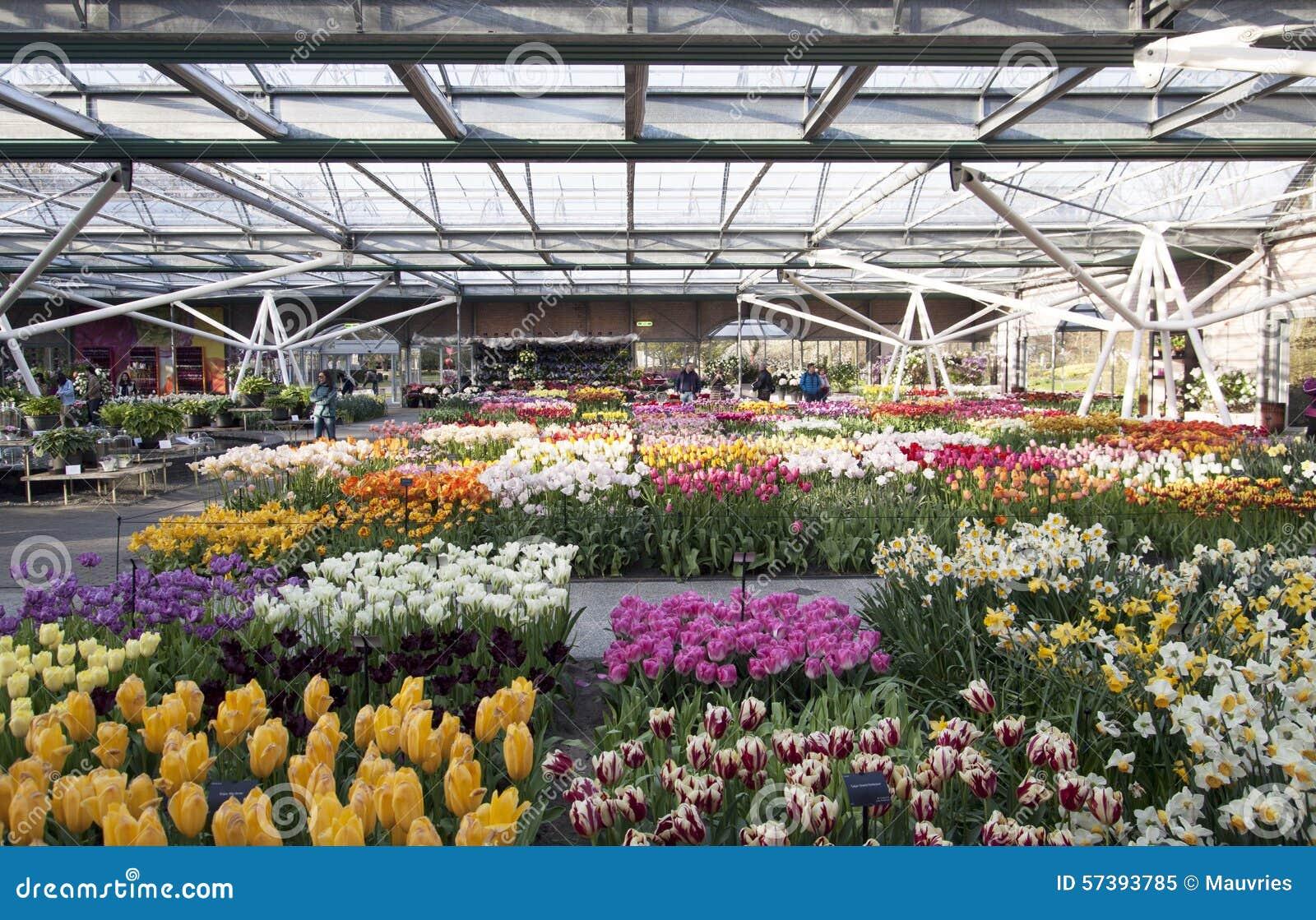 Beroemde bloemtuin in Holland