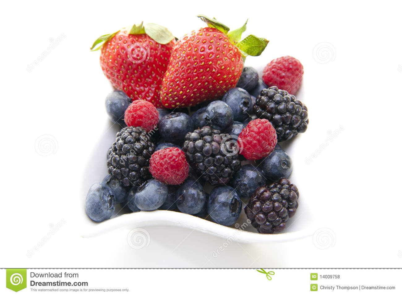 Download Berries in a bowl stock photo. Image of elegant, blueberry - 14009758
