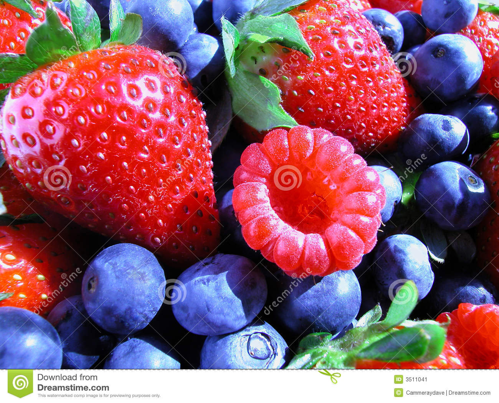 Berries summer