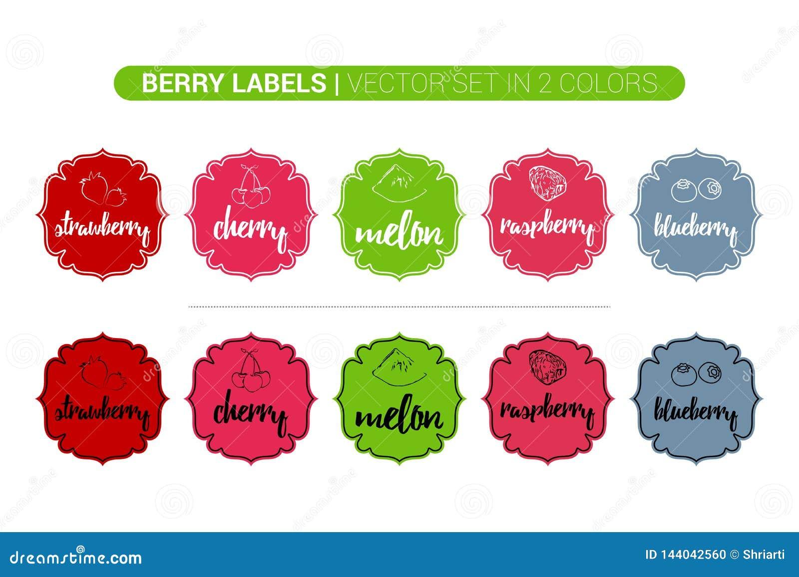 Berry Colorful-etiketreeks van aardbei, kers, meloen, framboos, bosbes Beeldverhaal Reclamestickers