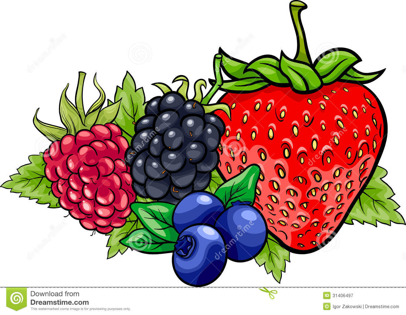 Berry Fruits Cartoon Illustration Royalty Free Stock Photography ...