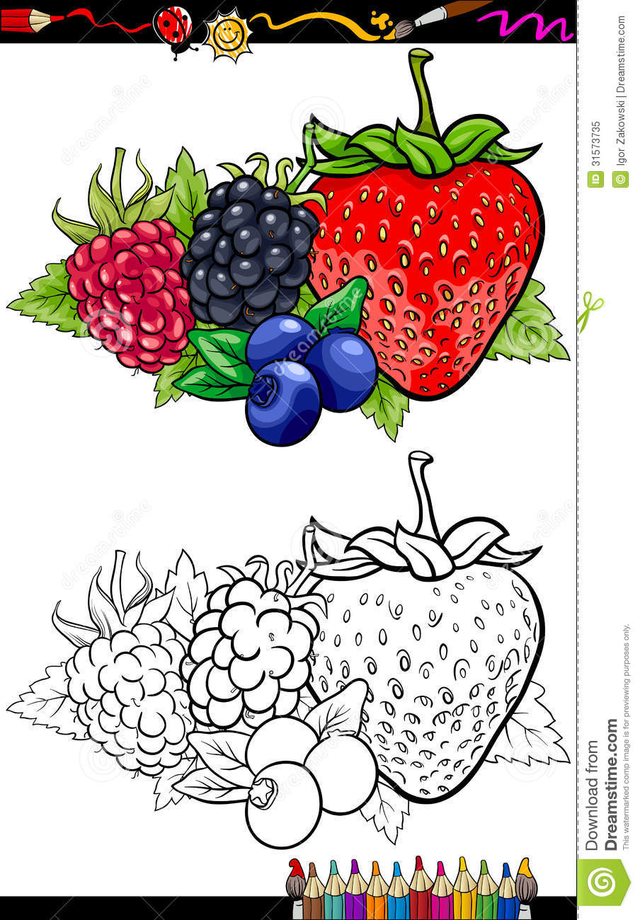Berry Fruits Illustration For Coloring Book Royalty Free