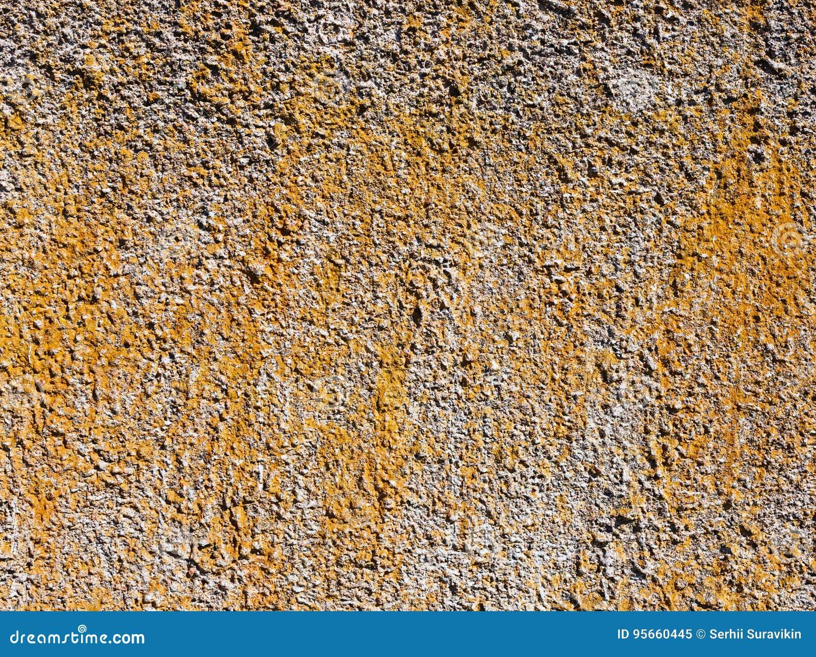 Beschaffenheit des Zementputzes für Hintergrund