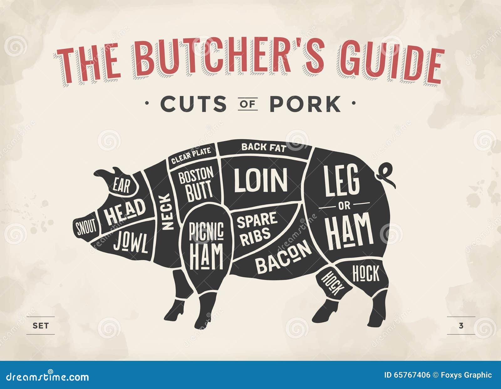 Besnoeiing van vleesreeks Het diagram, de regeling en de gids van de afficheslager - Varkensvlees Uitstekende typografische hand-