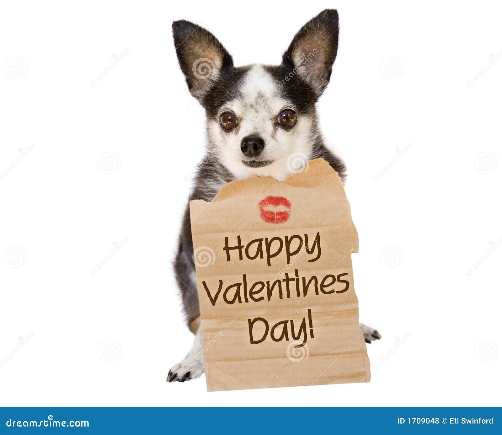 Beso del perro del día de tarjetas del día de San Valentín