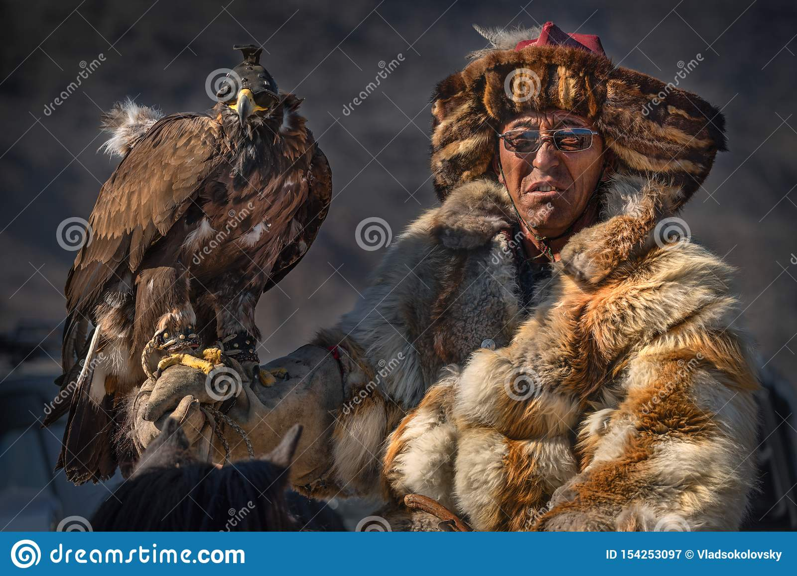 Bespectacled Experienced Mongolian Nomad In Fox Fur Coat, One Of The Participants Of Golden Eagle Festival.Man In Glasses With Gol