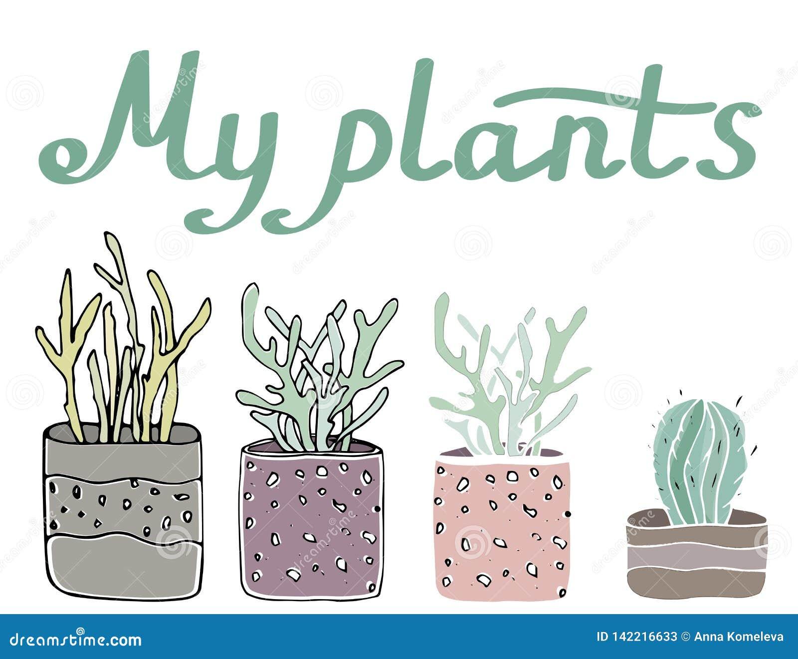 Beståndsdelar för Sety mysiga vektorillustration - inlagda växter