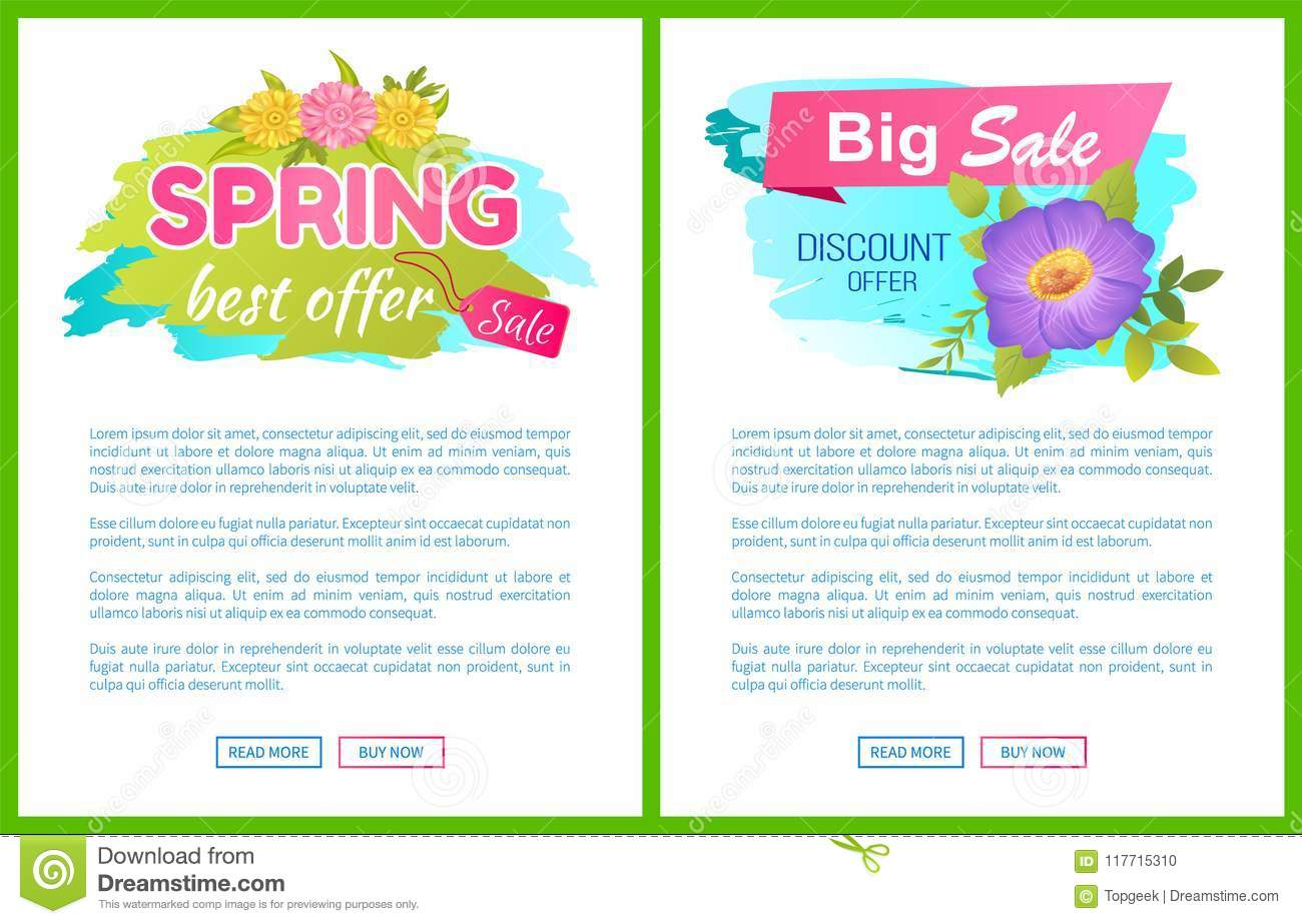Best Offer Spring Sale Advertisement Daisy Flowers Stock Vector