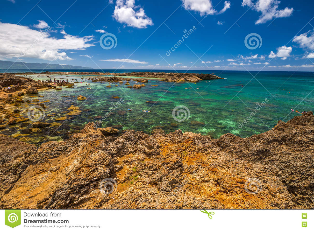 Best Snorkeling Oahu Stock Image Image Of Coral Island
