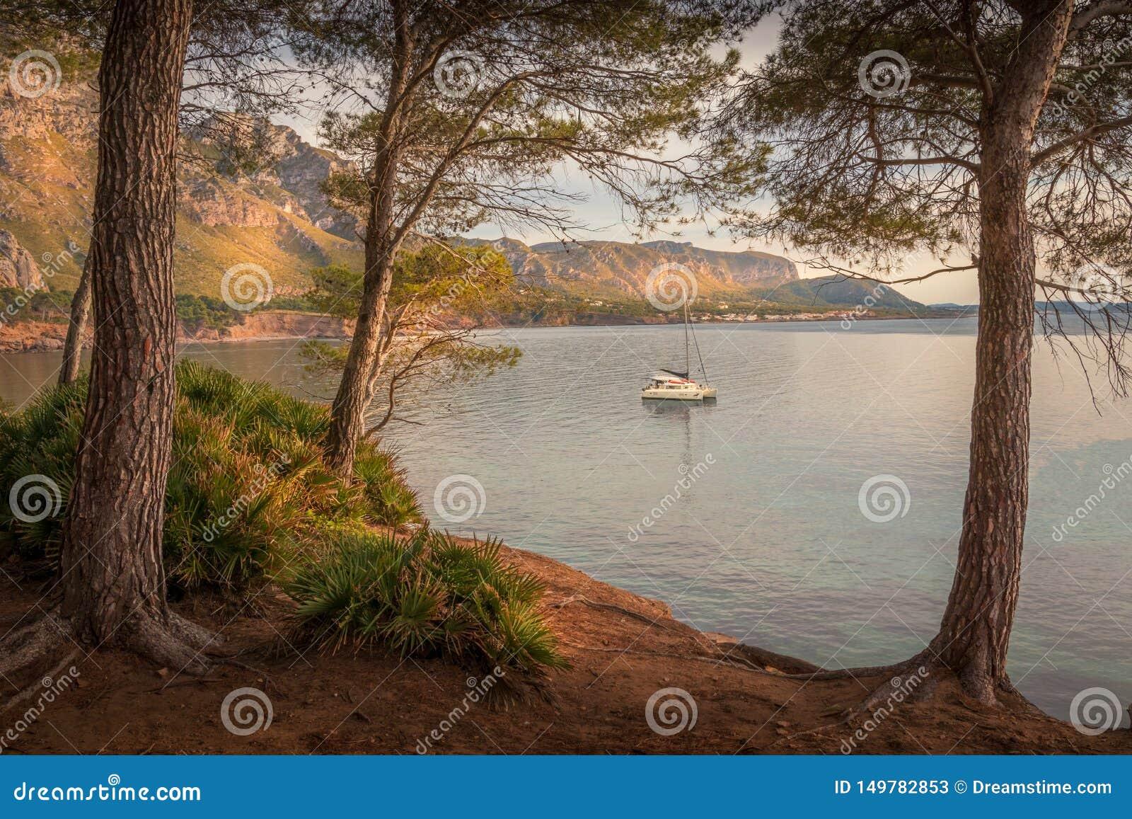 Betlem, cerca de Colonia De Sant Pere, ensenada, entrada, barco, yate, árboles, playa, naturaleza, oscuridad, puesta del sol, ref