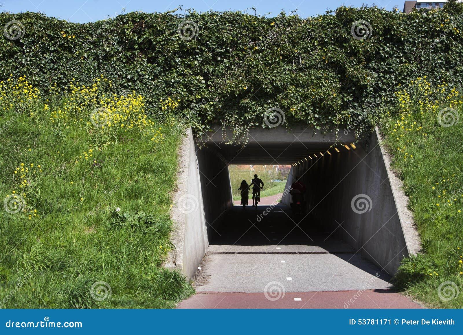 Betonowy rowerowy tunel