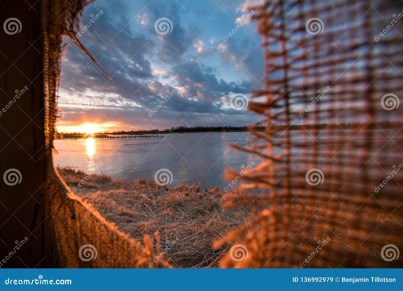 Betrachtung Sandhill streckt sich von einem Vorhang