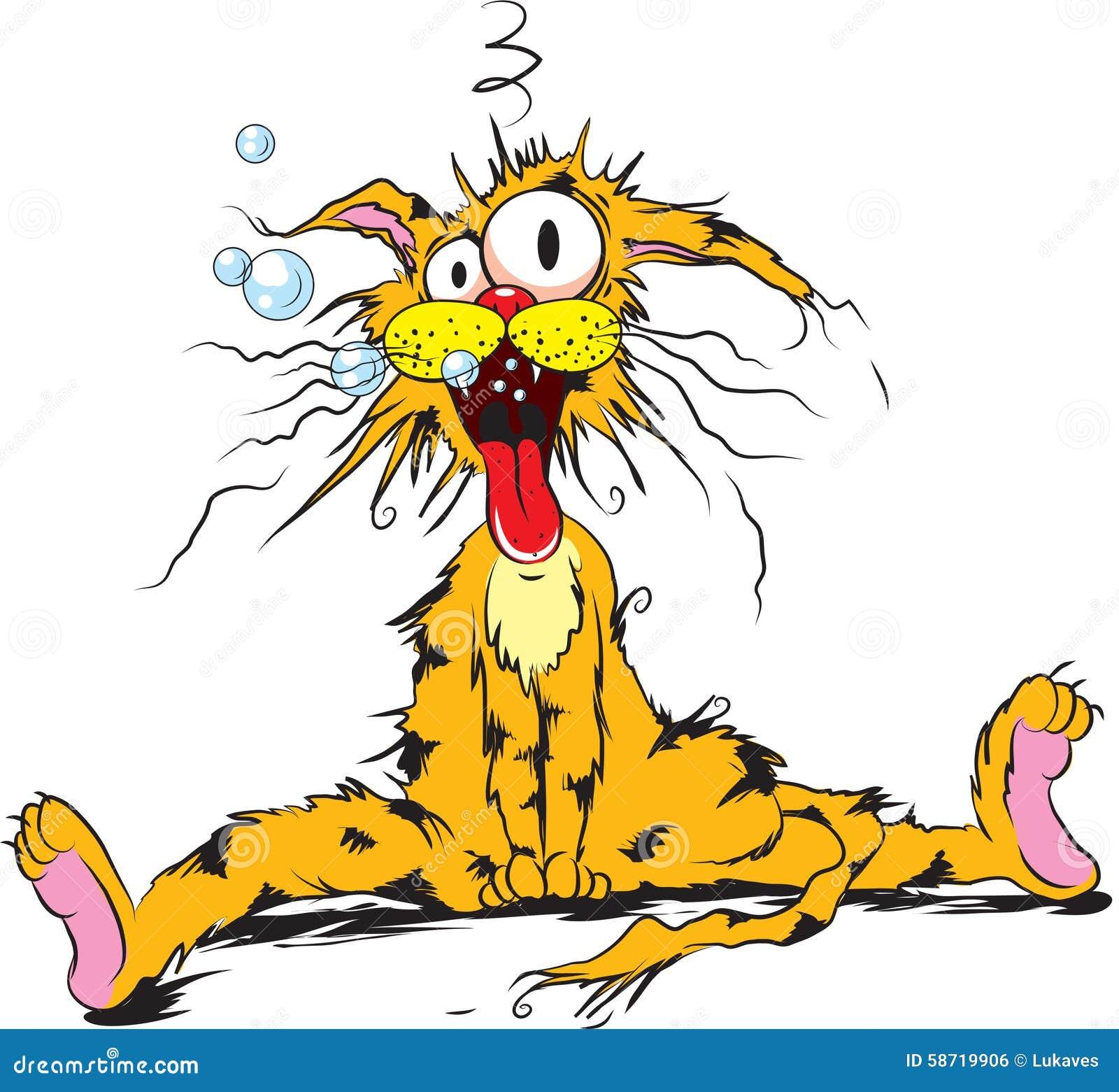 Betrunkene Katze Vektor Abbildung Bild Von Luftblasen