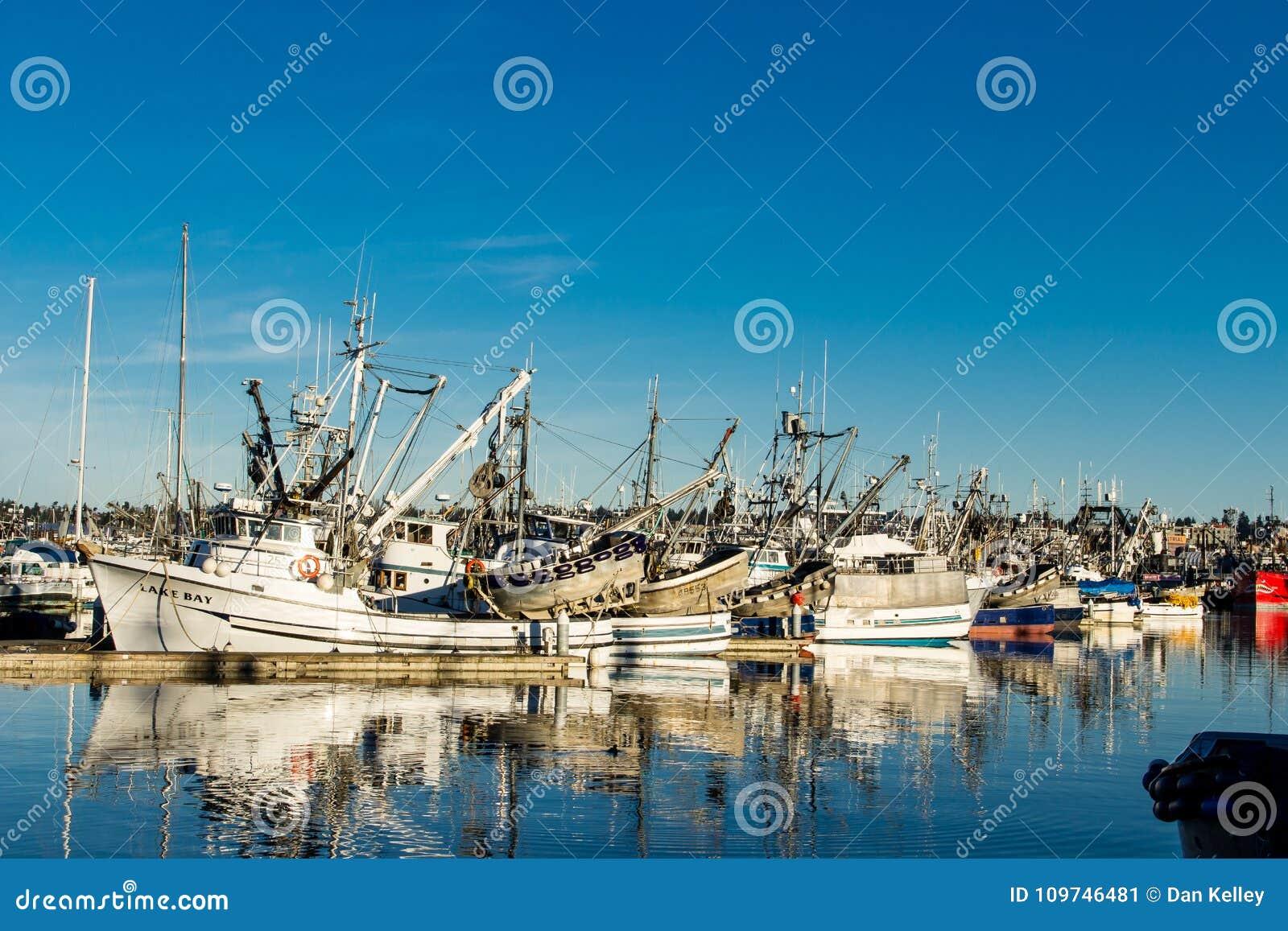 Beursseiners bij vissers` s terminal wordt vastgelegd in Seattle Washington dat
