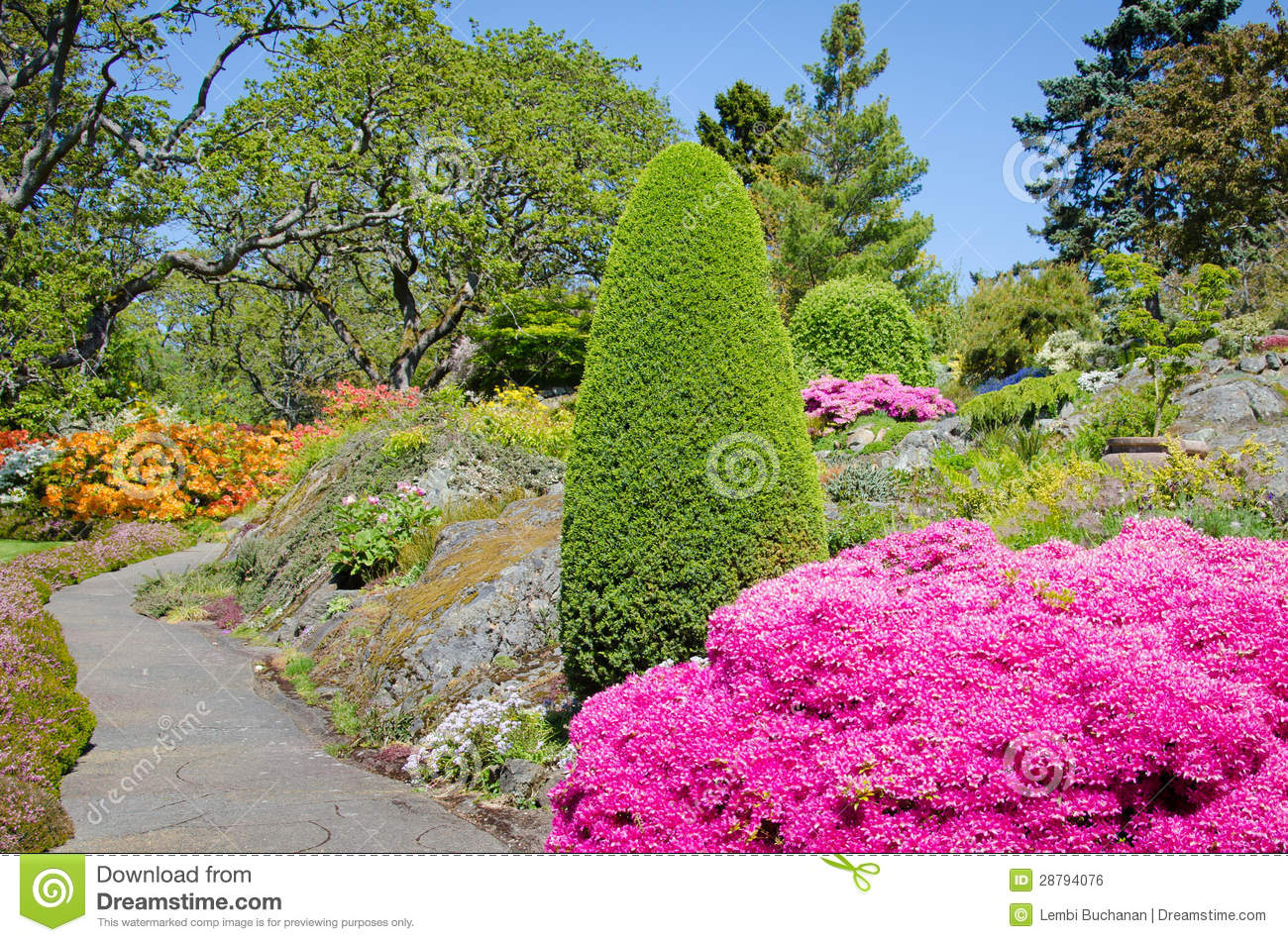 Beutiful beutiful garden in the spring royalty free stock image - image