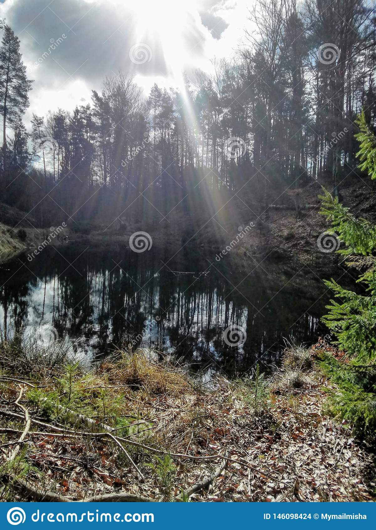 Beutifull Forest Lake