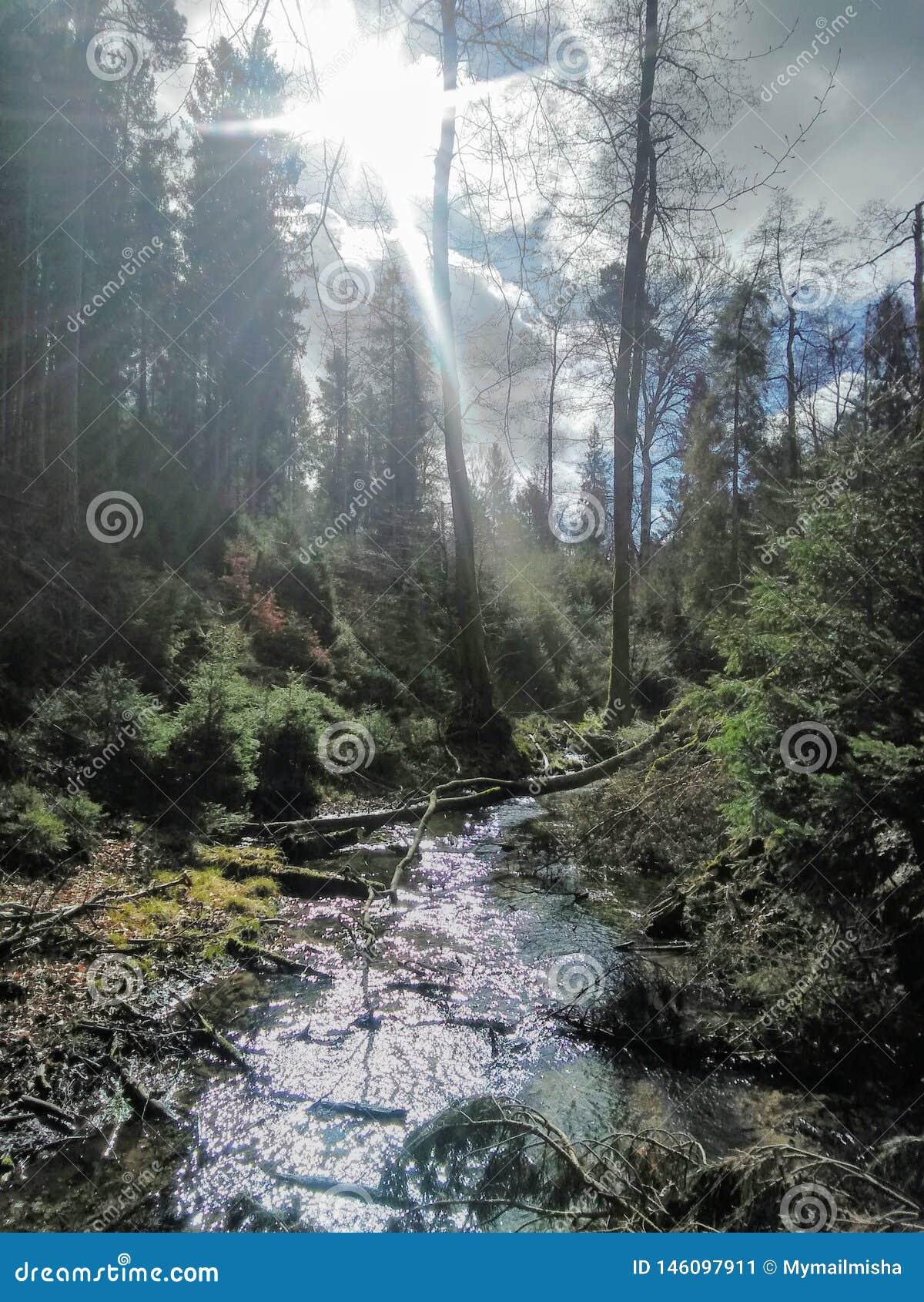 Beutifull river
