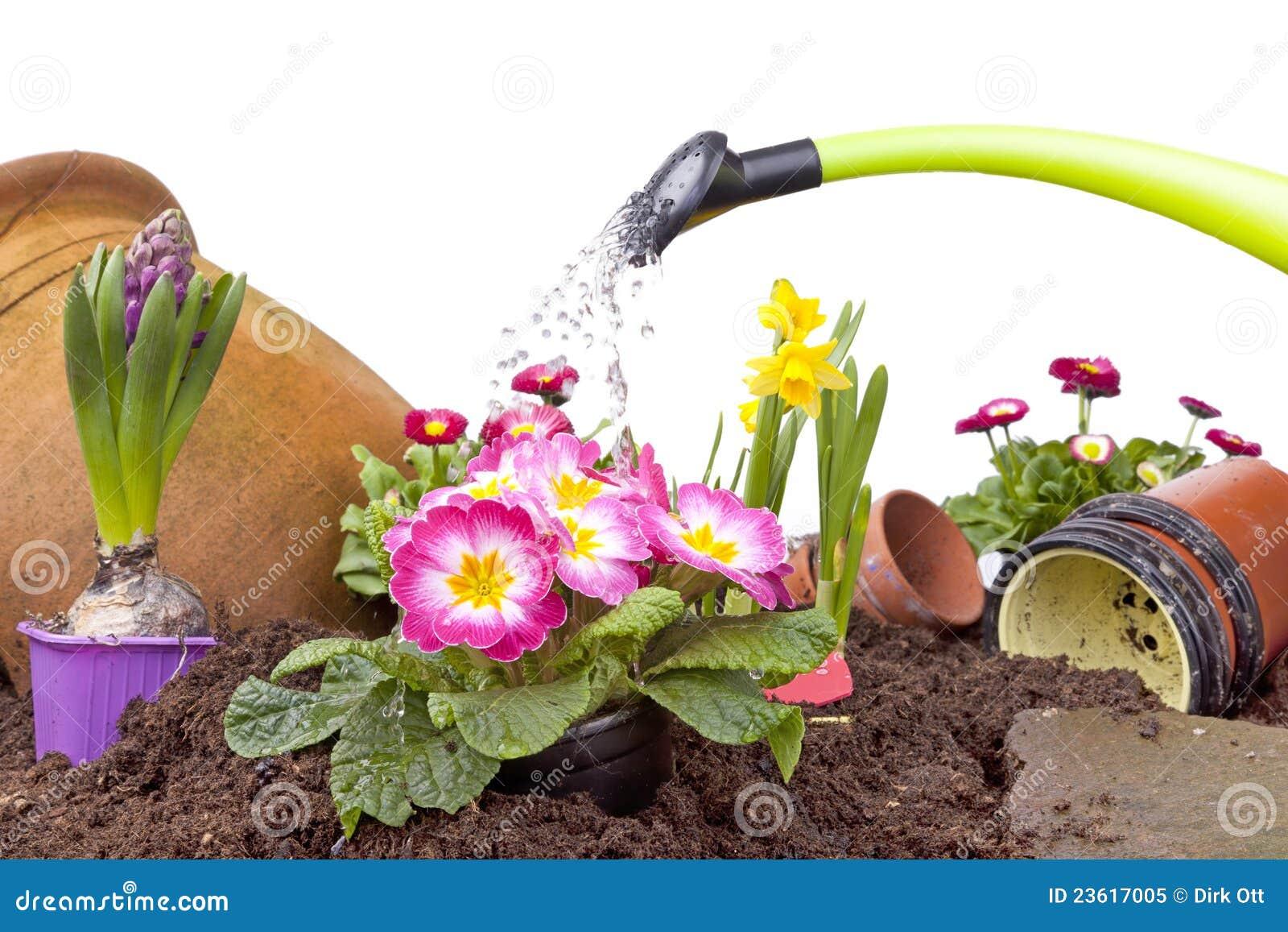 Bevattna för blommor