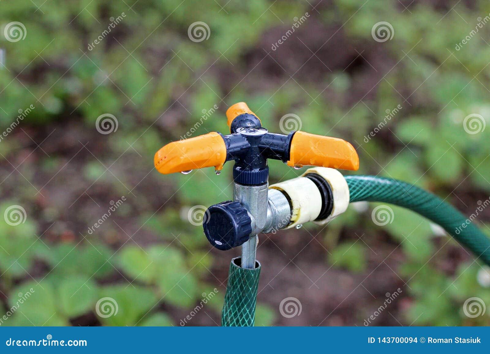 Bevattna systemet i trädgården