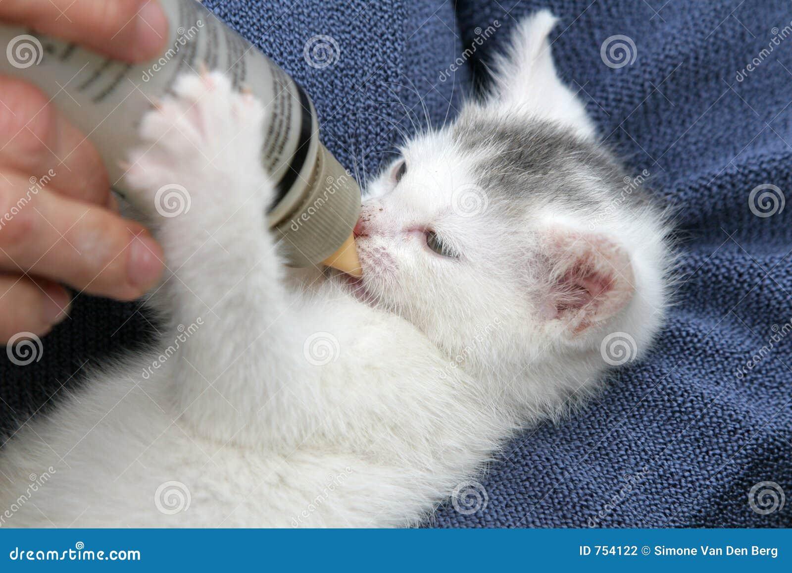 Bevendo dalla bottiglia