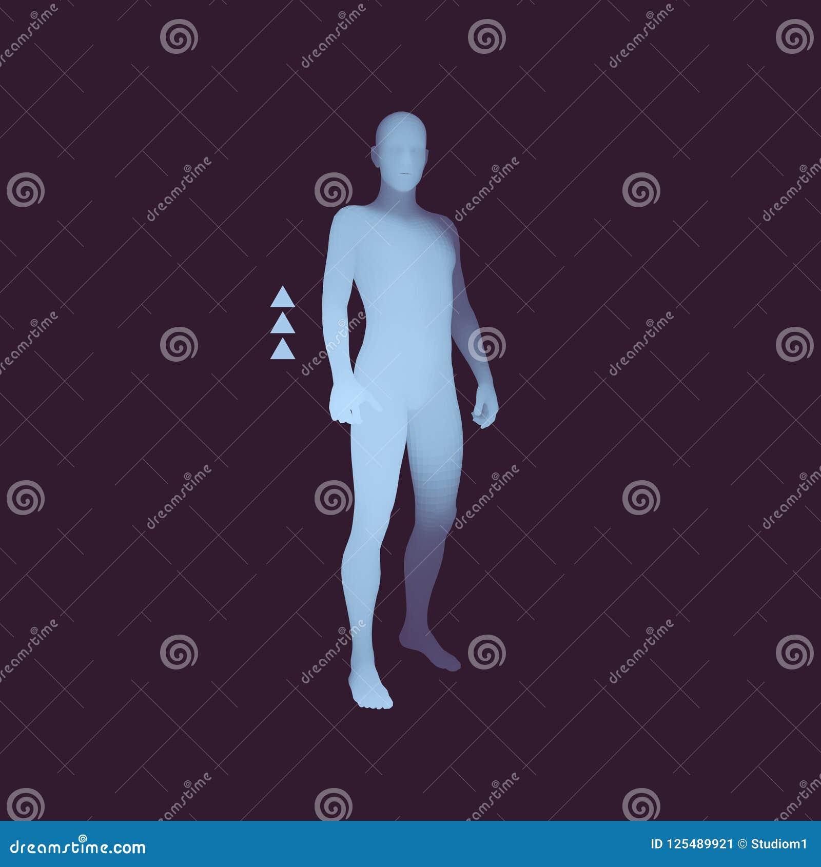 Bevindende mens 3D Menselijk Lichaamsmodel Het element van het ontwerp Mensentribunes op zijn Voeten