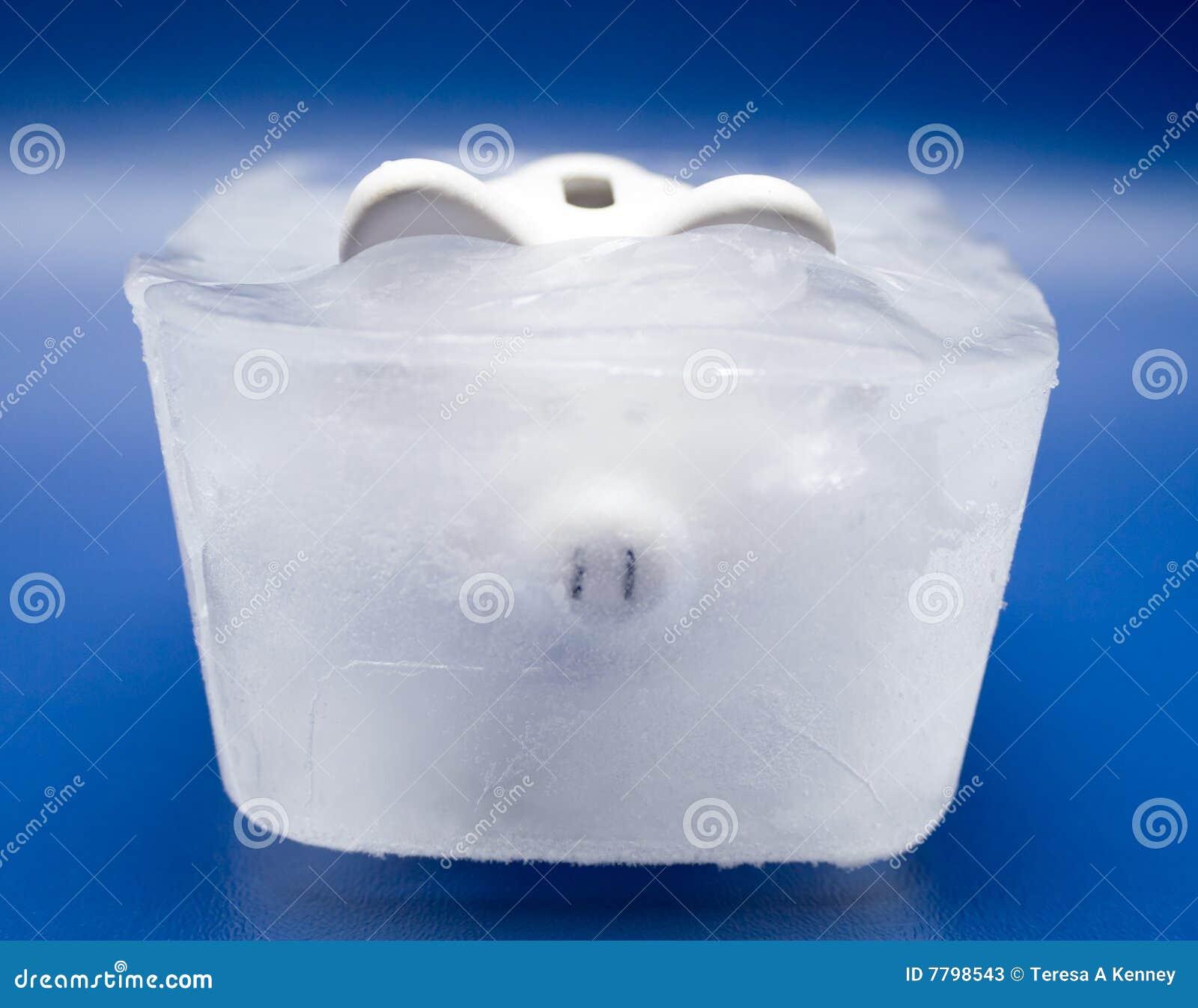 Bevroren Activa