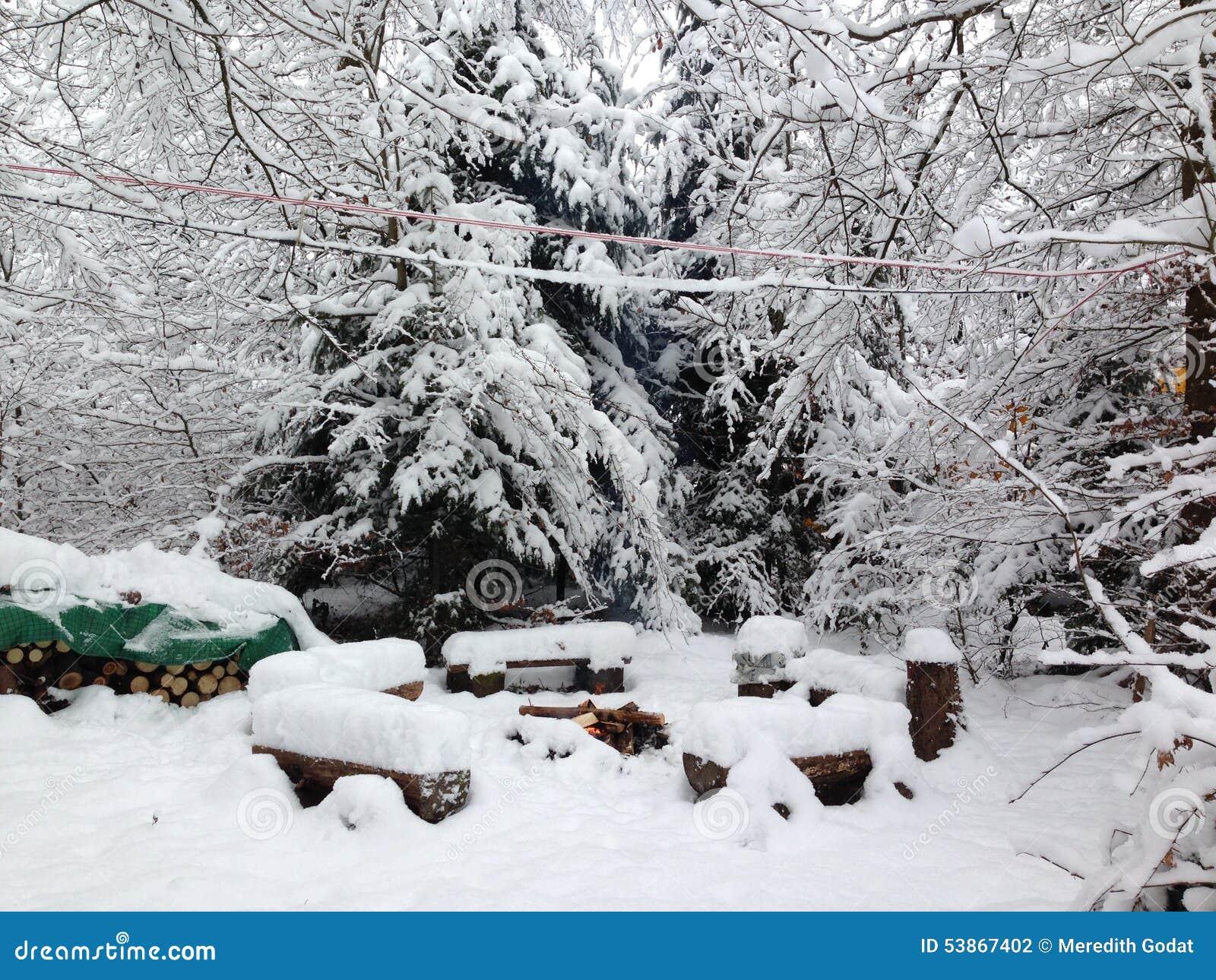 Bevroren kampvuur