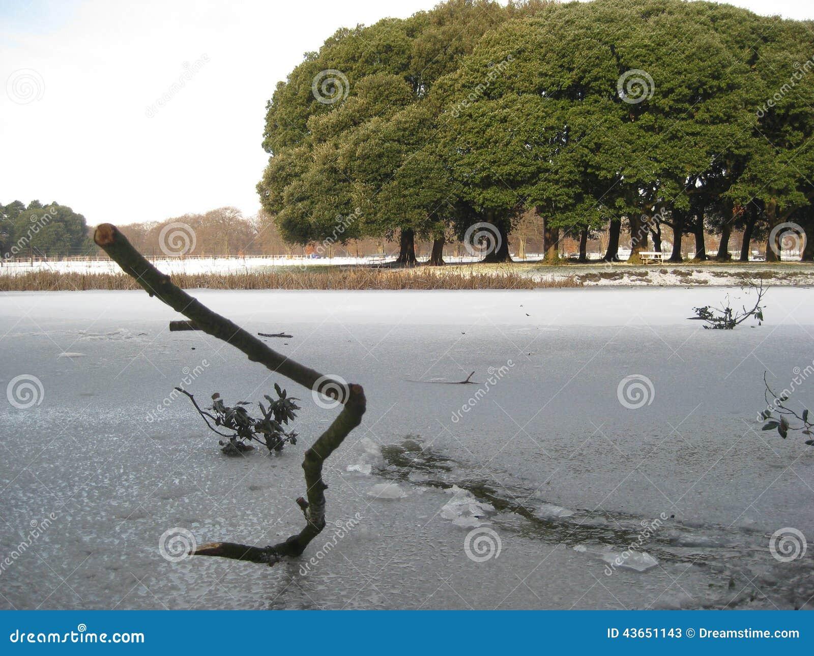 Bevroren meer, sneeuw, het park van Phoenix, Dublin, Ierland, de winter