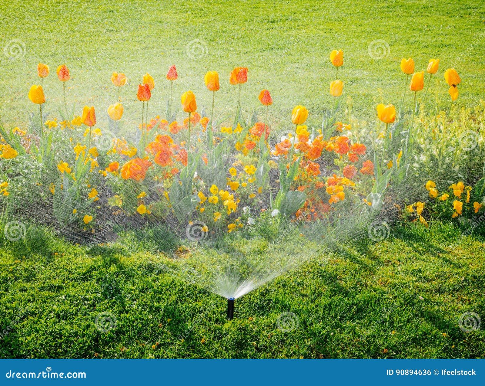 Bewasserungssystem Wasserberieselungsanlage Die Im Garten Arbeitet