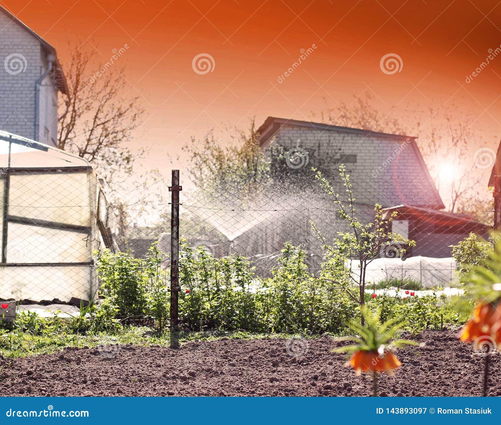 Bew?sserungssystem im Garten