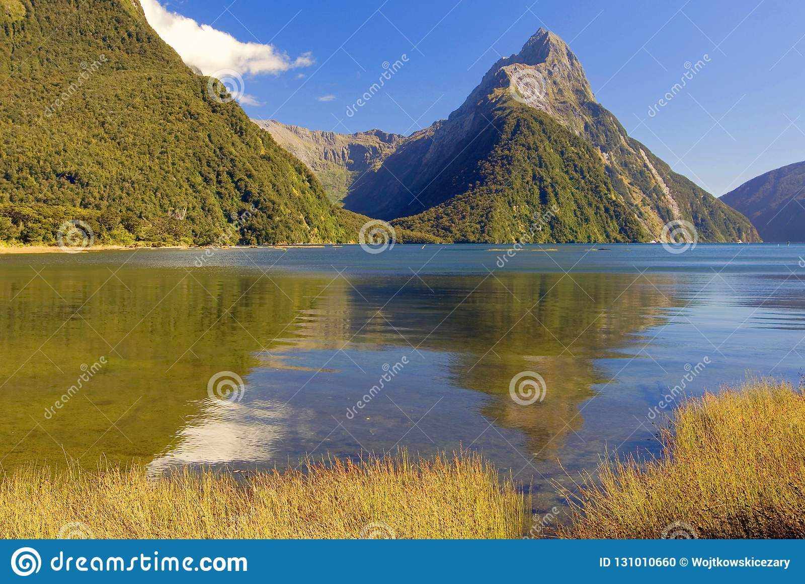 Bewerk Piek in Milford-Geluid in verstek, het Nationale Park van Fiordland, Zuideneiland, Nieuw Zeeland