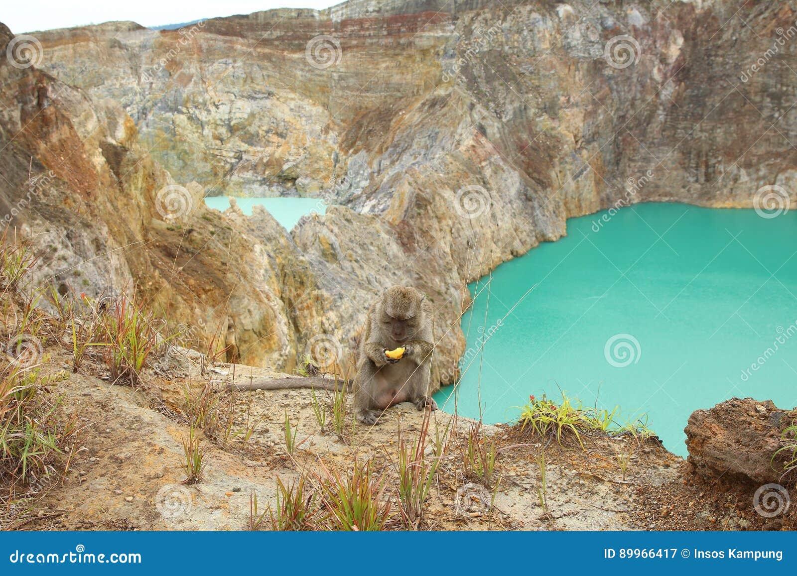 Bewitched or Enchanted Lake, Kelimutu Crater Lakes