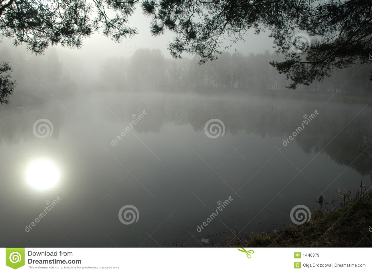 The bewitched lake