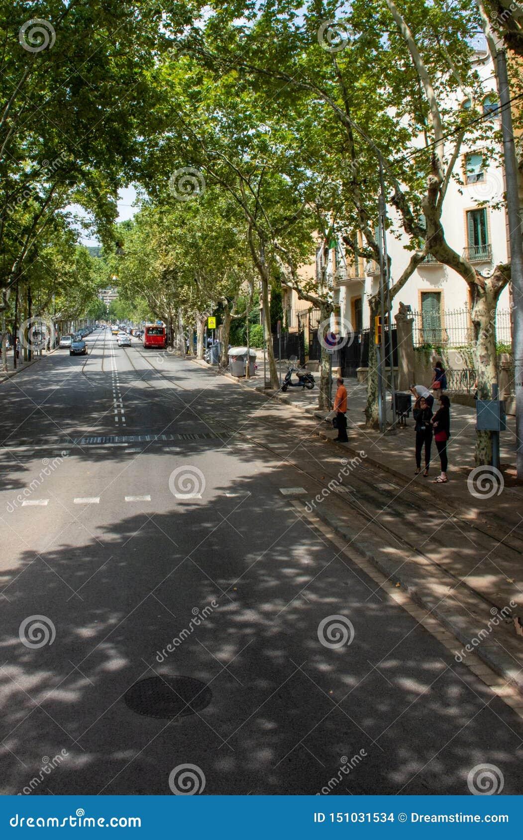 Bezige straat met voetgangers die weg van Barcelona wachten te kruisen