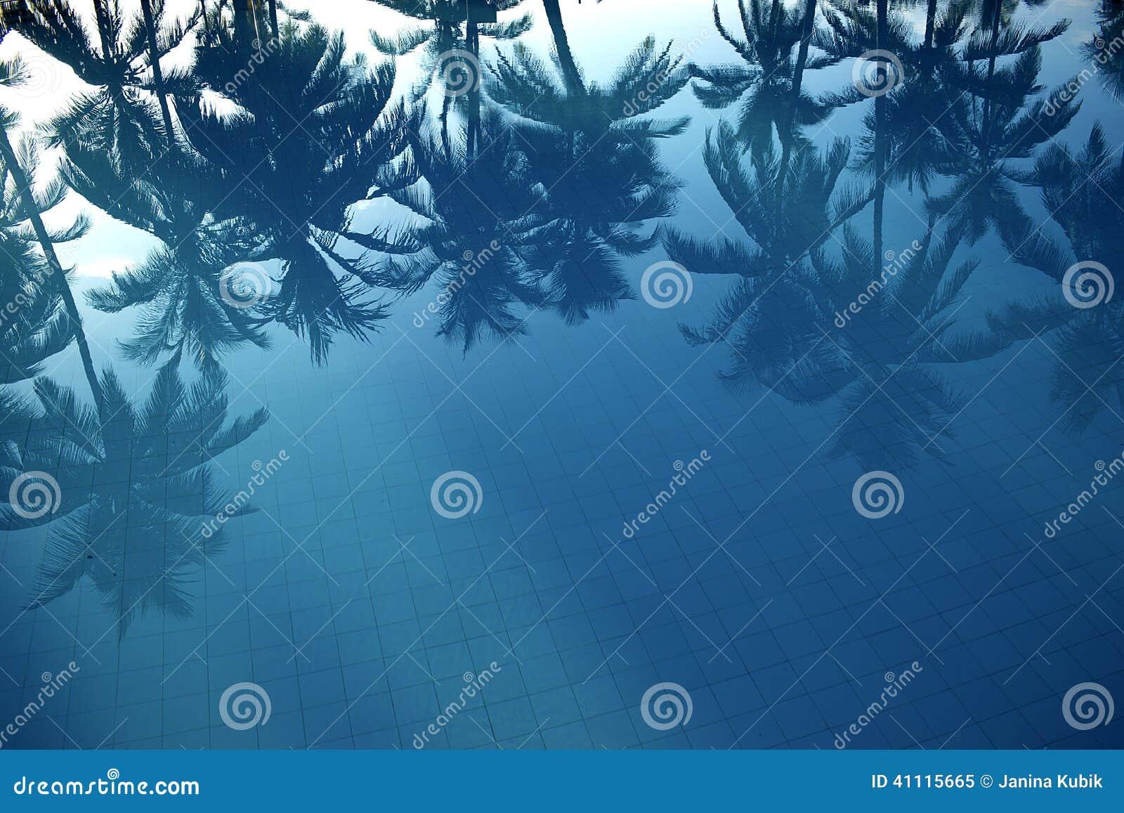 Bezinning van palmen in het water